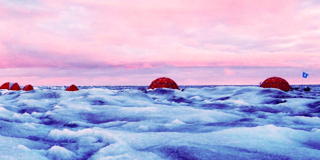 Eisalgen schmelzen Grönlandeis