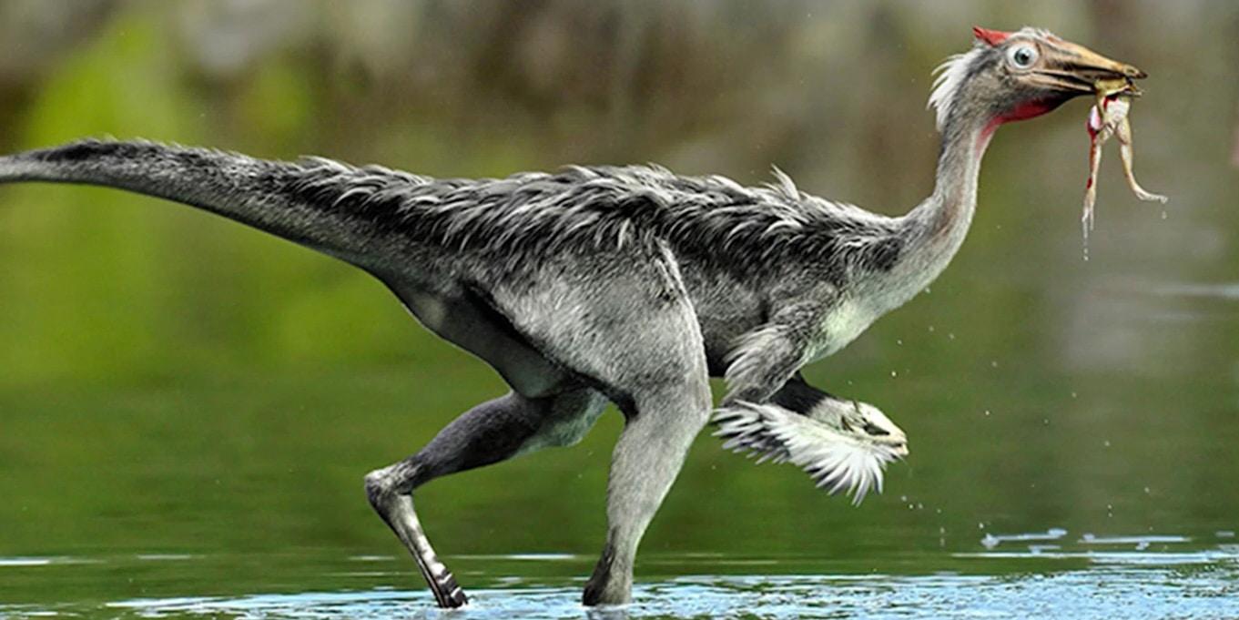 Dieser Dino ist kein Vogel, atmet aber wie einer? [video]