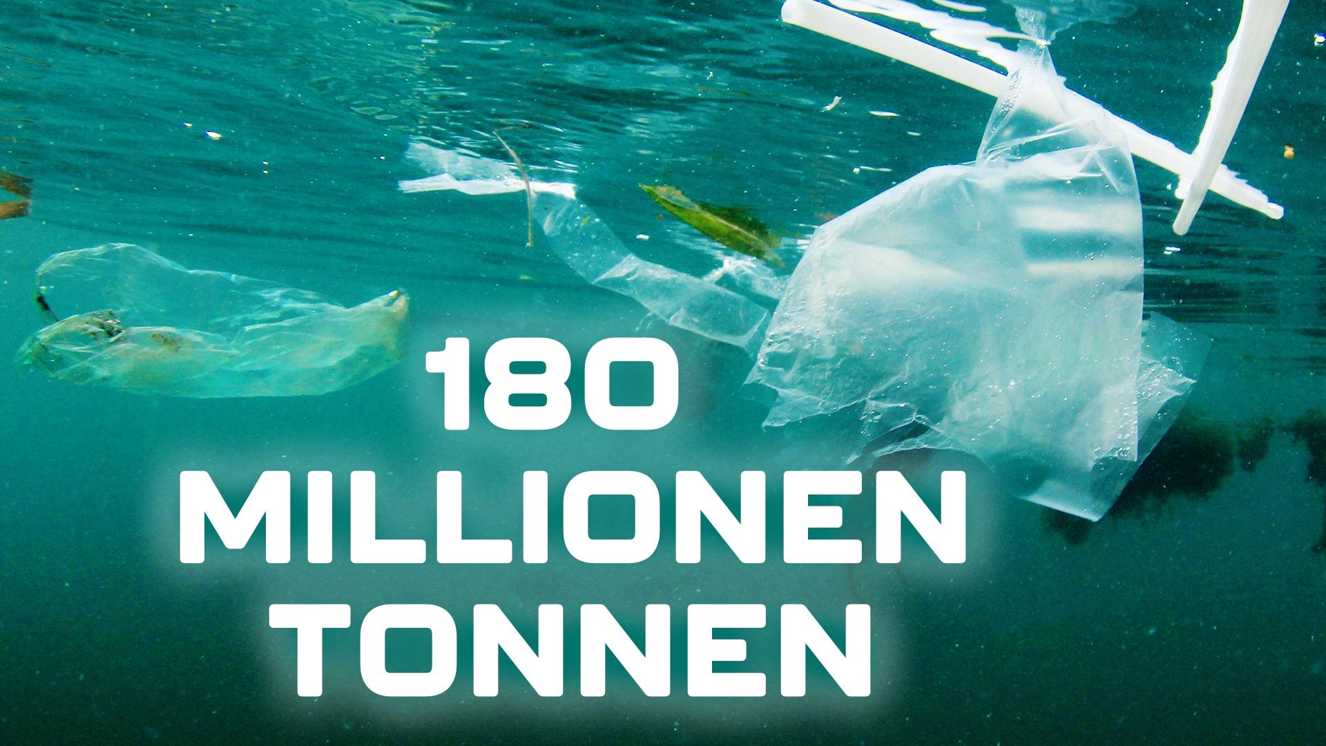 Was macht Mikroplastik mit den Tieren im Meer? – mit Thea Hamm